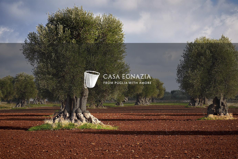 Casa Egnazia